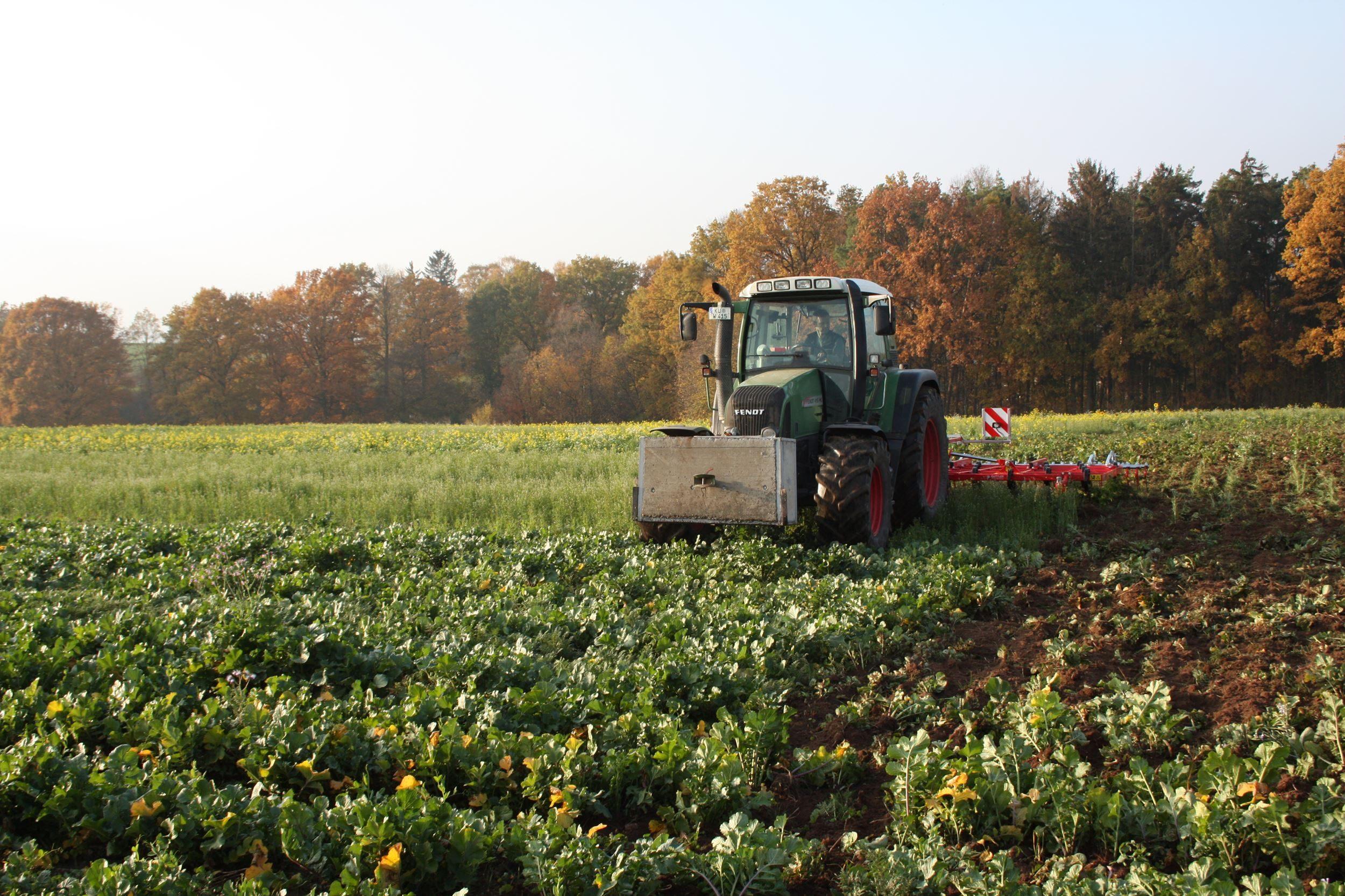 Dossier: groenbemesters: vernietiging van groenbemester: Cultivator