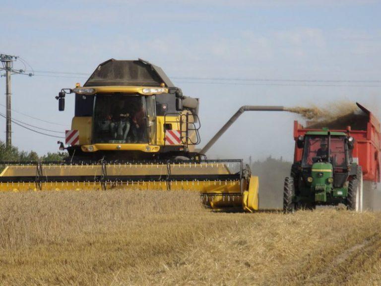 Magazine: Resistente onkruiden bestrijden kan (3) – Bij en na de oogst